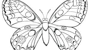 Butterfly Coloring Pages Printable Kinkenshopinfo