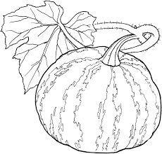 Small Picture Vegetables Coloring Pages 3 Vegetables Kids Printables