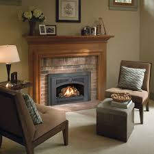 view image 32 dvs gas fireplace insert
