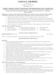 Resume Template For College Students Mesmerizing Chief Operations Officer Resume Coo Resume Templates For College