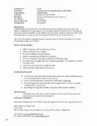 Skills Summary For Resume Unique Resume Beautiful Resume Template