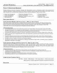 Sample Security Manager Resume Best Security Operations Manager Resume Sample Resume Format For 15
