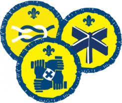Image result for beaver Activity badges