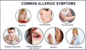 6 Best Homeopathic Medicines for Allergy,HAY FEVER Treatment ...
