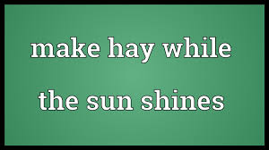 make hay while the sun shines meaning make hay while the sun shines meaning