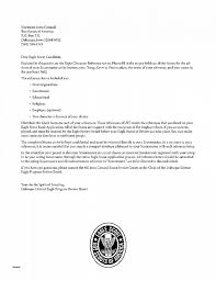 Letter Of Recommendation Inspirational Examples Of Eagle Scout
