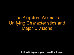 Ppt The Kingdom Animalia Unifying Characteristics And