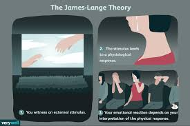 The James Lange Theory Of Emotion