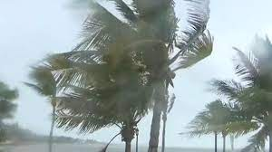Florida braces as Tropical Storm Elsa ...