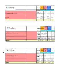 Skill Set Template Performance Matrix Template Excel 9 Box Excel Template Grid