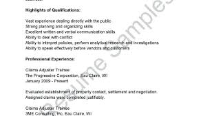 Claims Adjuster Resume Adorable Job Description For Claims Adjuster Claims Insurance Job Description