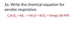 write the chemical equation for aerobic respiration