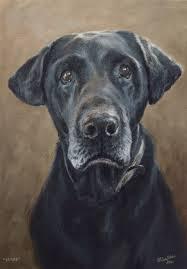 dog portrait painting of labrador drake 10x14 dogportrait petportrait