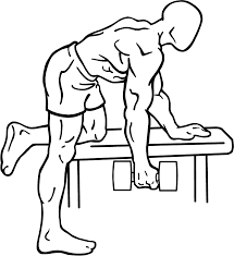 scoliosis workouts Body Transformation Workout Plan At Home db rows 5 x 5 (following same principle of heavy weight, low volume, you should be struggling to finish the last two sets, but still finishing them Body Fat Loss Before and After