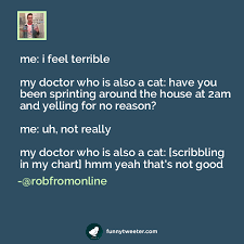 Uh My Chart Me I Feel Terrible My Doctor Who Is Also A Cat Have You