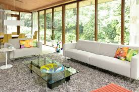 living room shag rug. Good Looking Shag Rug In Living Room Modern With Family Couch Next To Simple Sofa M