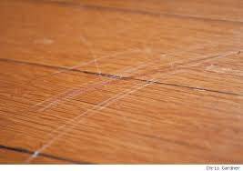 ... Photo Of Hardwood Floor Scratch Repair Repair Hardwood Floor Scratches