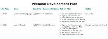 Personal Improvement Plan Template Performance Improvement Plan Example Form Mail Format