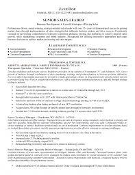 original papers   executive curriculum vitae writing service      Resume Website Builder Resume