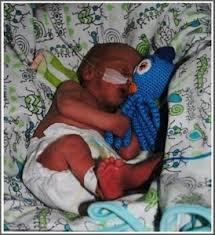 Crochet Octopus For Premature Babies Pattern Best Crochet Octopus For Premature Babies High Priority Project Babies