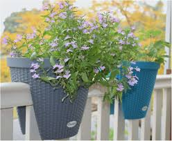 conceptions of window herb garden kit of fancy how to build a herb garden box the