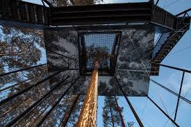 invisible tree house hotel. Seventh Room At Tree Hotel. Image By Johan Jansson / Mediadrumworld.com Invisible House Hotel