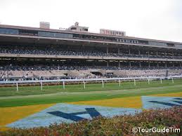 Del Mar Breeders Cup Seating Chart Del Mar Horse Races Tourguidetim Reveals San Diego