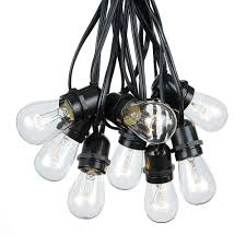 25 Clear S14 Commercial Grade Light String Set on 37.5' of Black Wire