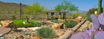 Small Picture Phoenix Landscape Design and Custom Landscaping Contractor