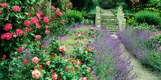 Small Picture 9 Cottage Style Garden Ideas Gardening Ideas