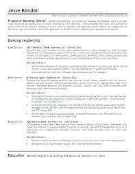 Auditor Resume Sample Senior Auditor Resume Audit Associate Resume Delectable Private Equity Resume