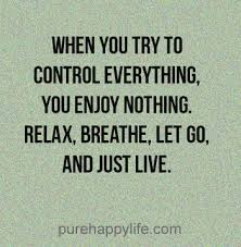 Just Live Life Quotes Cool Inspirational Quote When You Try To Control Everything You Enjoy