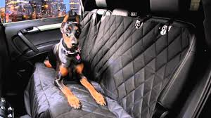 how to turn the interior of your car into dog hair proof topics car seat coverdog