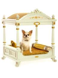 luxury pet furniture. Luxury Pet Furniture We Have An Elegant Assortment Of Beds And Accessories For Small Medium Sized Dogs Create Your Own Dog With