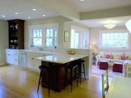 kitchen color decorating ideas. Living Room Kitchen Combo And Color Ideas Adorable Open Divider Together Design Sitting Combined Decorating O