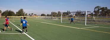 grass soccer field. EXPAND Grass Soccer Field