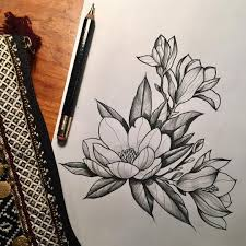 For Sweet Faustine Magnolia Botanical Sketch Drawing Flower