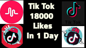 free tik tok followers no verification