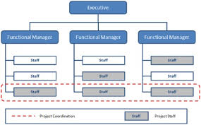 Project Team Structure Chart Organizational Structure Types For Project Managers