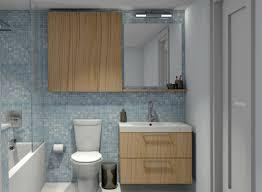 Kitchen Cabinets In Bathroom Home Decor Ikea Kitchen Cabinets In Bathroom Bath And Shower