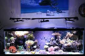 marine aquarium led lighting reviews the union co