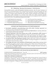 Cover Letter Vice President Marketing Resume Resume For Vice