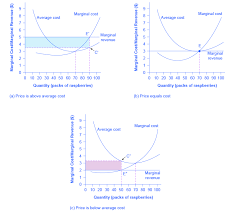 profit loss graph reading profits and losses with the average cost curve