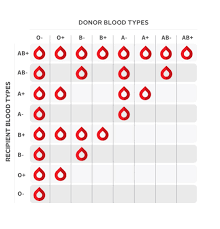 Blood Donor And Recipient Chart Blood Donation Posted In The Coolguides Community