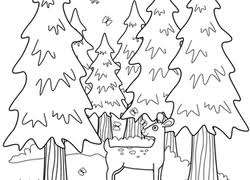 Forest Animal Coloring Page Forest Coloring Pages Printables Education Com