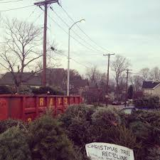The background: The week before Christmas, I learned that the City of  Indianapolis decided to forgo their usual Christmas tree recycling and will  be ...