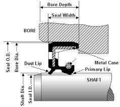 Dimensioning An Oil Seal Allied Metrics Seals Fasteners Inc