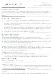 Executive Summary Resume Examples Magnificent Resume Executive Summary Samples Example Professional Good Best