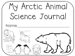 Polar Region Animals Coloring Pages Colouring Sheets Animal Arctic