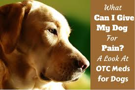 Dog Aspirin Dosage Chart What Can I Give My Dog For Pain Otc Pain Medications For